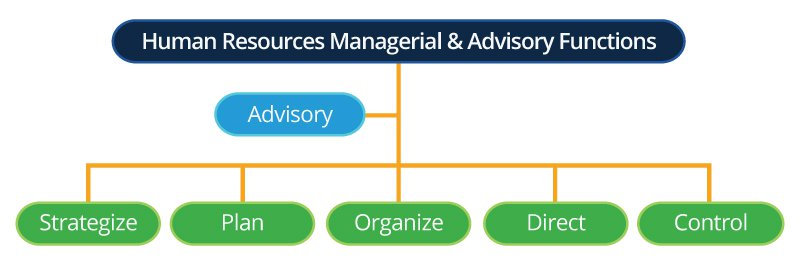 human resources managerial advisory functions