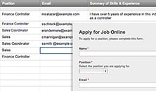 Job Application Web Form Template