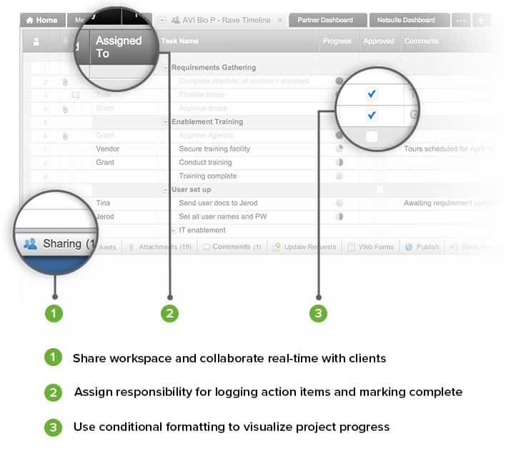 Smartsheet Shared Worksheets