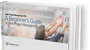 Agile Project Management 101 Guide