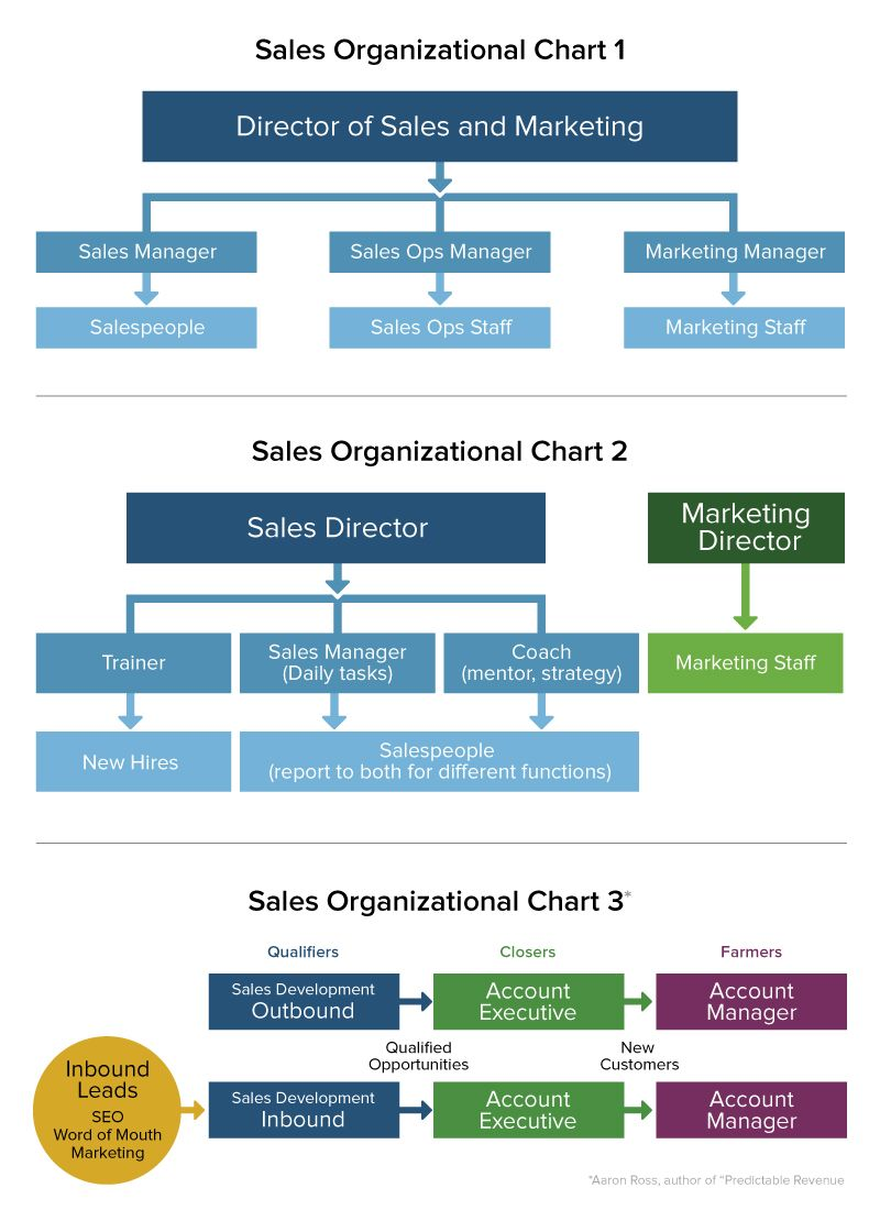 The development of company staff. How to organize an effective process