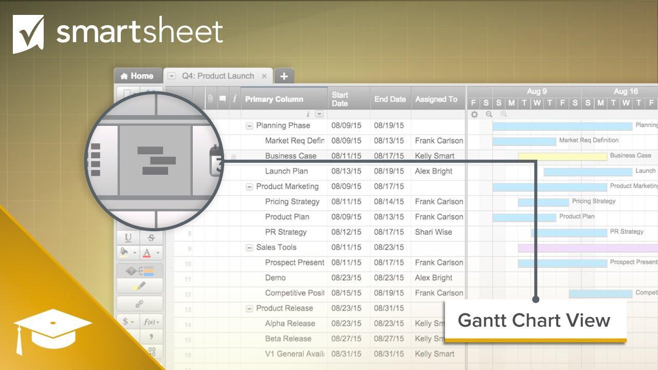 Gantt Chart View